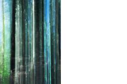 Green_Curtain©Joanna_Vortmann_4