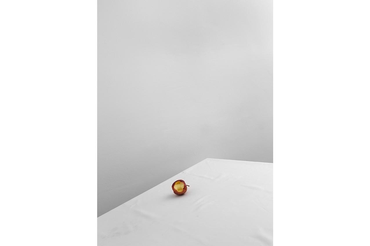 """gedenke! Apfel """"Erkennen"""" © joanna vortmann"""