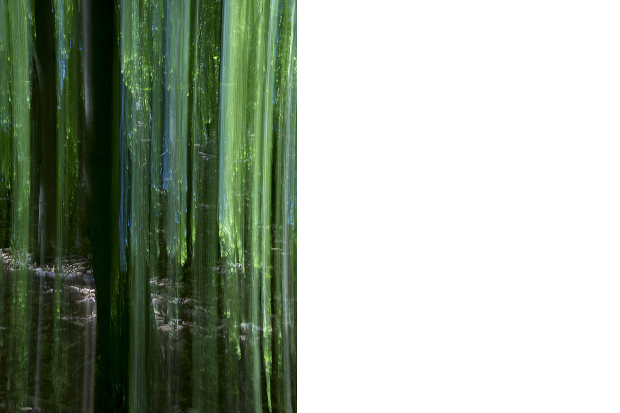 Green_Curtain©Joanna_Vortmann_3
