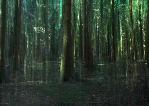 Green_Curtain©Joanna_Vortmann_(7)