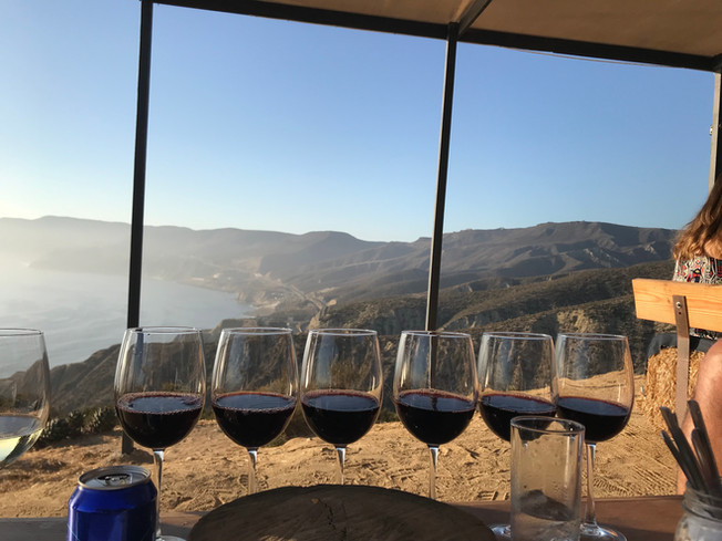 Valle de Guadalupe in 4 days, 3 nights