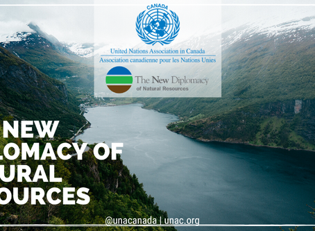 The New Diplomacy of Natural Resources: The Future of Energy Development
