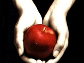 Review: Twilight by Stephenie Meyer (Spoiler-Free)