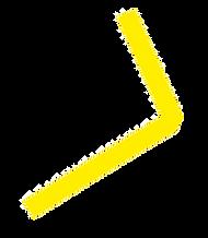 motif7.png