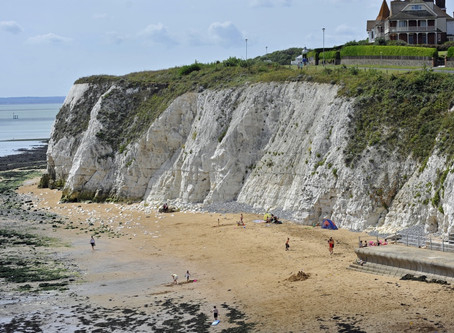 Marine Conservation in Thanet