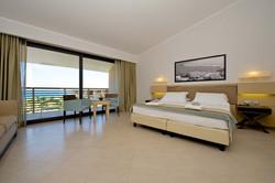 Zimmer Cv resort
