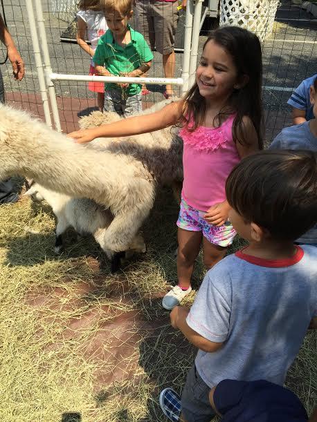 Zoo 2015 4