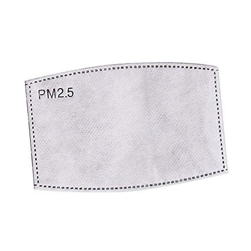 Filtres PM2.5 (Lot de 10 unités)