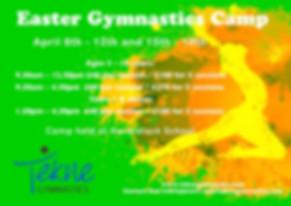 Tekne Gymnastics Easter Camp