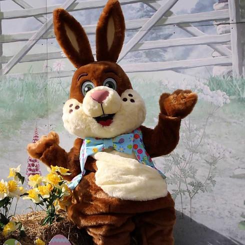 Easter Eggstravaganza at Willows Farm