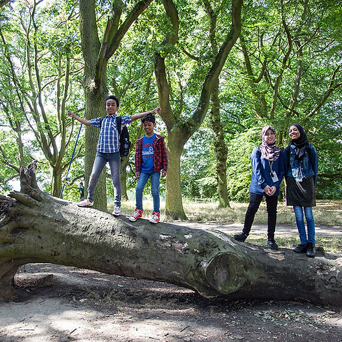 8-12s Nature explorer session - trees and plants