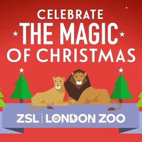 The Magic of Christmas at London Zoo