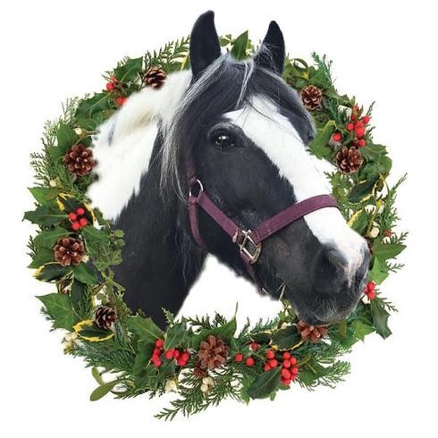 Kentish Town City Farm Christmas Fayre
