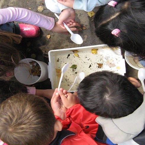 Seedlings & Explorers - bugs & beasties in The Regent's Park