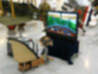 simulator 1.jpg