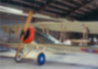 Display Spad 1.jpg