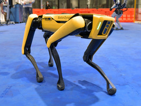 What Went Wrong With The NYPD's Robot Dog?