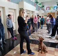 Volunteer Training at Oakland Animal Services