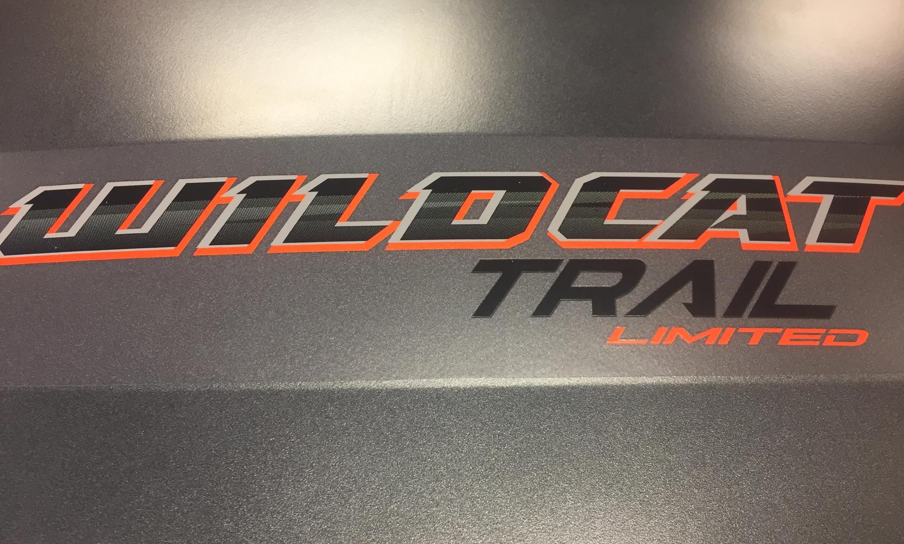 2020 WILDCAT TRAIL LTD 006.JPG