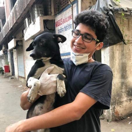 This Mumbai Boy Is Feeding Stray Animals Every Day Since Lockdown