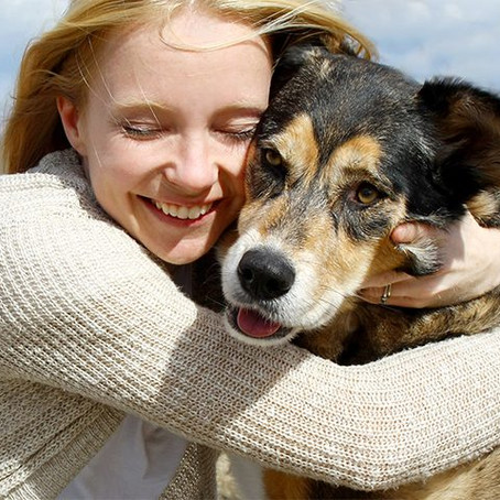 Fighting coronavirus fears and isolation with the love of our pets