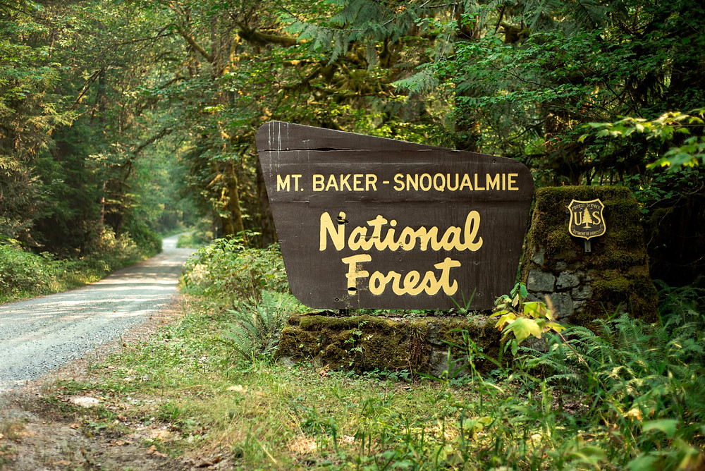 Mt baker-snoqualmie forest sign