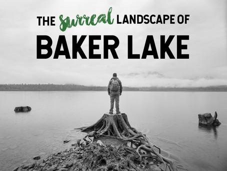 The Surreal Landscape of Baker Lake
