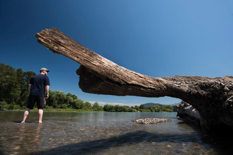 Standing near large driftwood skagit river