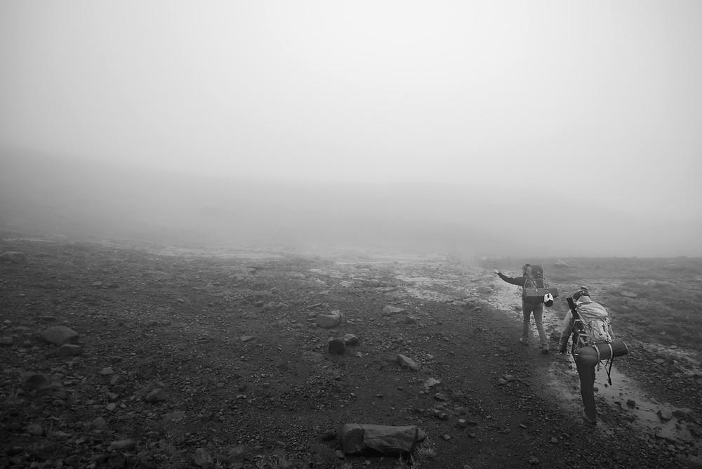 Foggy trail Ptarmigan Ridge