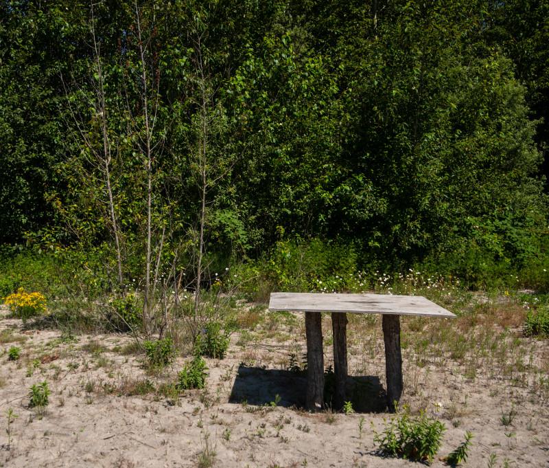 Make-shift table on unnamed island skagit river