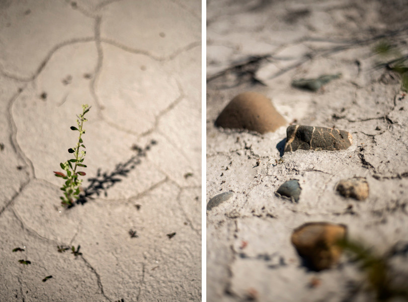 cracked sand and rocks