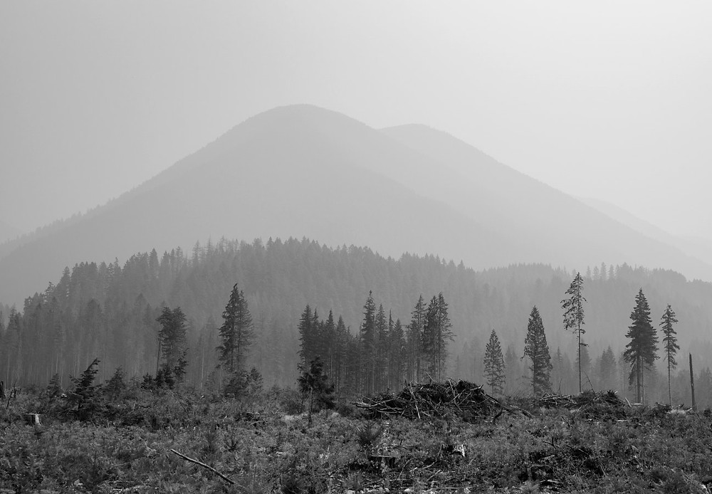 Hazy osbcured mountain