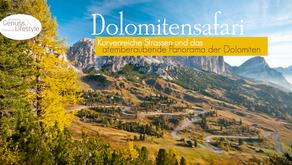 DEUTSCHLAND | ÖSTERREICH | ITALIEN (Dolomitensafari)