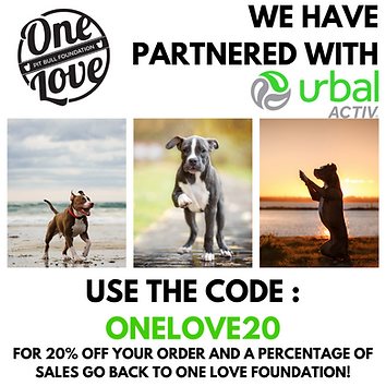 PARTNERED WITH UA4.png
