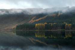 Scotland Lakeside Forest