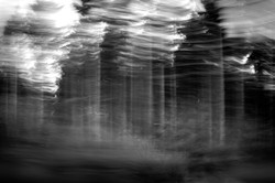 Abstract Tree Movement