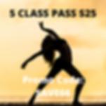5 CLASS PASS $25.png