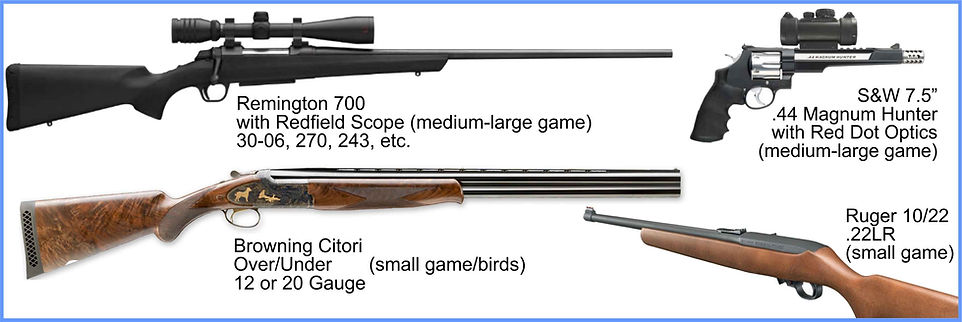 Remingt700, Smith & Wesson .44 mag Browning Citori and a Ruger 10/22