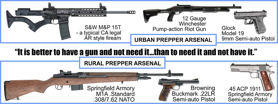 Smith & Wesson M&P15T, Winchester SXP Shotgun, Glock 19 9mm, Springfield M1A and a 19111