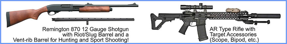 Remington 870 12 GA & AR Type Rifle