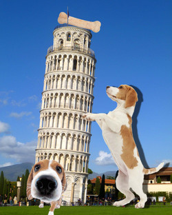 Herrera Sarah Leaning Tower of Pisa