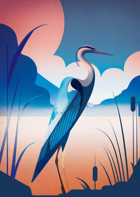 Heron By Still Pond