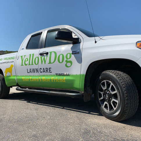 Yellow Dog Lawn Care