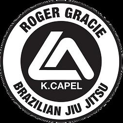 Image result for roger gracie academy jiu jitsu club