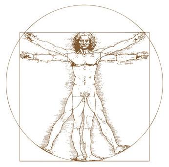 Organsprache und Psychosomatik - was dir dein Körper sagen möchte