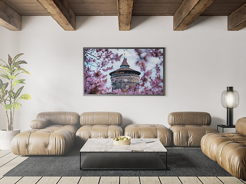 Laufer Turm mit Kirschblüten