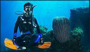 Scuba Diving, Bali