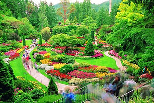 Victoria Gardens
