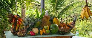Tropical Garden, Penang