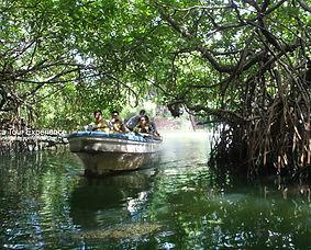 Marsh Boat Trip